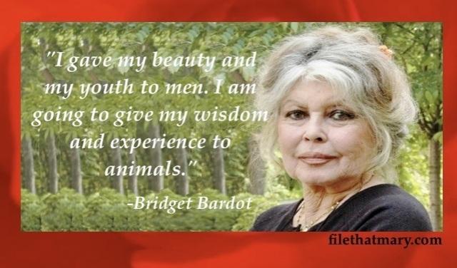 Best Bridget Bardot