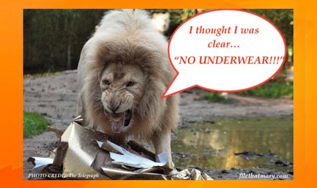 Best Lion Underwear