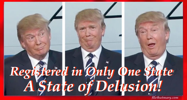 a-delusioniol-state