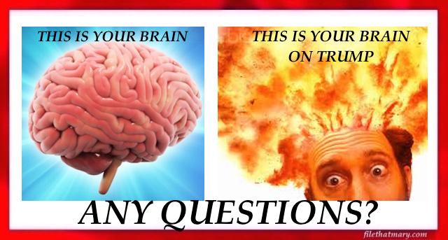 A trump brain