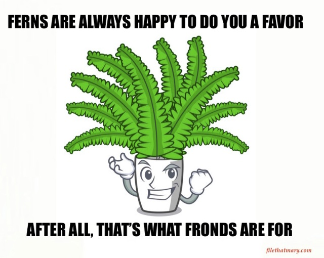A FROND FRIEND